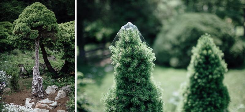 martina-tomas-svadba-kosice-botanicka-zahrada-003